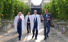 The Head of State visits Green Capital Kazakhstan greenhouse complex